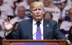 A Deep Look Into Trump's Impeachment